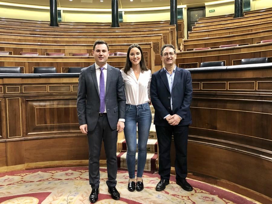 Los diputados y senadores del PSOE de León entregan sus credenciales en las Cámaras Alta y Baja