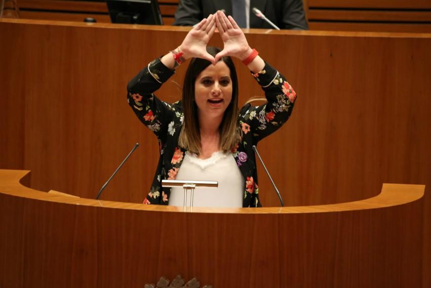 El pleno de las Cortes rechaza la moción socialista para abrir el camino a la igualdad real entre hombres y mujeres