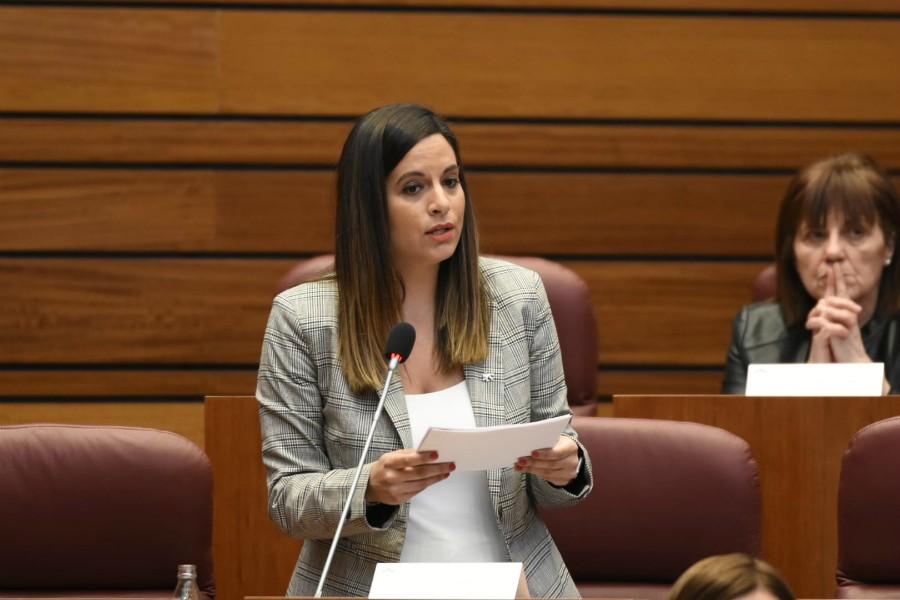 El PSOE denuncia a la Junta de Castilla y León por ser la única Comunidad con más fallecidos en residencias de mayores que en hospitales con un 24% más de casos