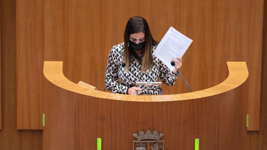 El PSOE apela al consenso para la puesta en marcha de medidas de apoyo a la conciliación a causa del Covid -19