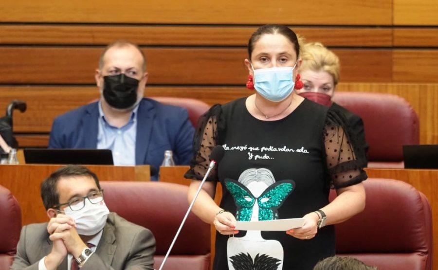 El PSOE insta a la Junta a cumplir sus compromisos con los Servicios Veterinarios Oficiales de los mataderos e industrias cárnicas de Castilla y León